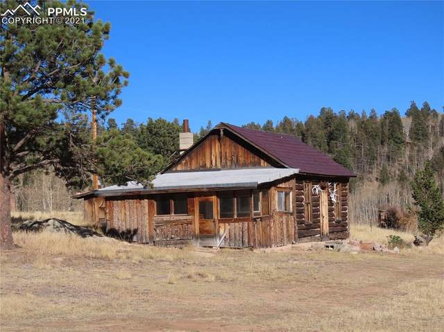 3547 County Road 100, Guffey, CO 80820 (#2919449) :: Fisk Team, eXp Realty