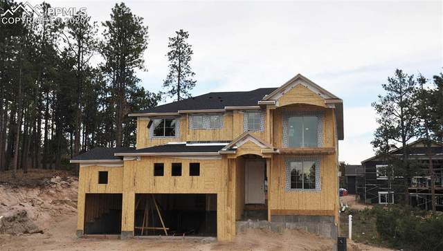 16025 Sunrise Glory Lane, Monument, CO 80132 (#2920720) :: Compass Colorado Realty