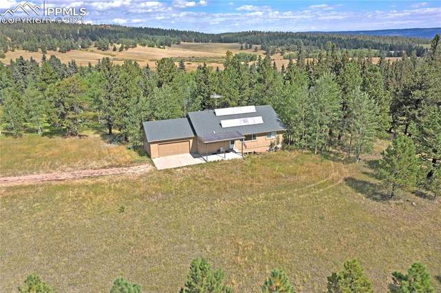 385 Pine Bluff Drive, Divide, CO 80814 (#2937866) :: Simental Homes   The Cutting Edge, Realtors