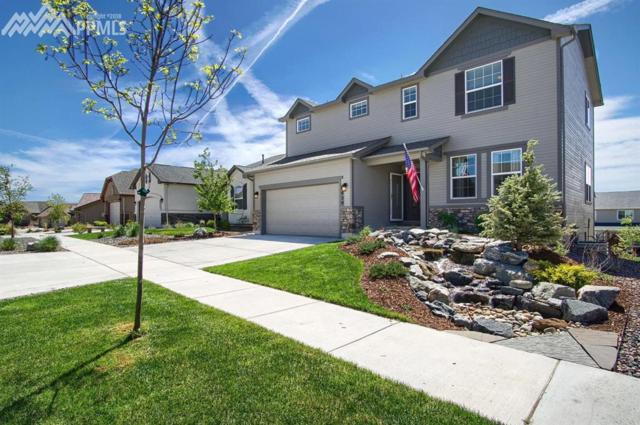 6039 Traditions Drive, Colorado Springs, CO 80924 (#2942020) :: The Treasure Davis Team