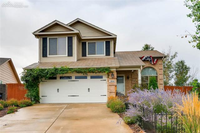 2930 Frazier Lane, Colorado Springs, CO 80922 (#2942997) :: 8z Real Estate