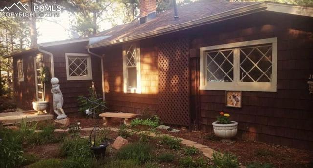105 Pueblo Court, Palmer Lake, CO 80133 (#2947302) :: Colorado Home Finder Realty