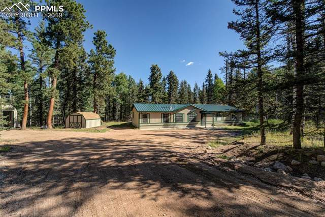 3662 County 5 Road, Divide, CO 80814 (#2995400) :: The Peak Properties Group