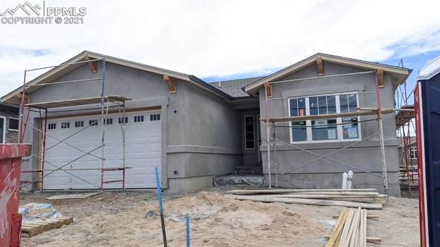 4541 Horse Gulch Loop, Colorado Springs, CO 80924 (#3002014) :: The Daniels Team