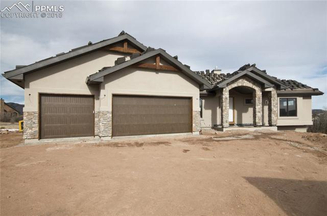 803 Forest View Way, Monument, CO 80132 (#3009381) :: Action Team Realty