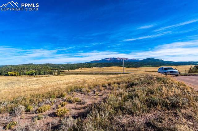 254 County 25 Road, Divide, CO 80814 (#3011177) :: The Daniels Team