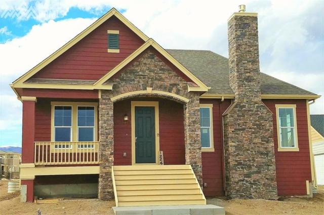 1224 Lady Campbell Drive, Colorado Springs, CO 80905 (#3017547) :: Action Team Realty