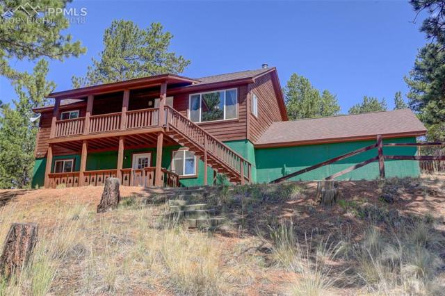 351 Deep Lake Drive, Divide, CO 80814 (#3026361) :: Jason Daniels & Associates at RE/MAX Millennium