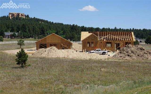 603 Pioneer Haven Point, Palmer Lake, CO 80133 (#3033207) :: 8z Real Estate