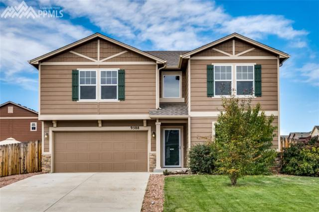 9588 Desert Poppy Lane, Colorado Springs, CO 80925 (#3050083) :: 8z Real Estate