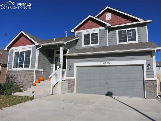 4629 Dancing Light Way, Colorado Springs, CO 80911 (#3050395) :: Fisk Team, RE/MAX Properties, Inc.