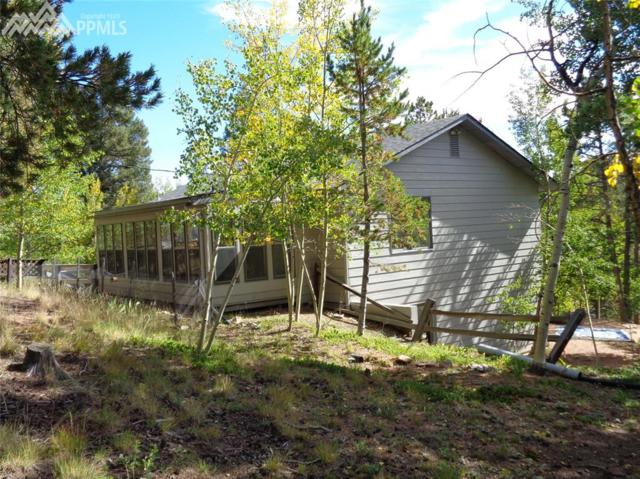 2695 Holden Road, Woodland Park, CO 80863 (#3057479) :: 8z Real Estate