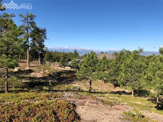 4615 Foxchase Way, Colorado Springs, CO 80908 (#3063611) :: The Peak Properties Group