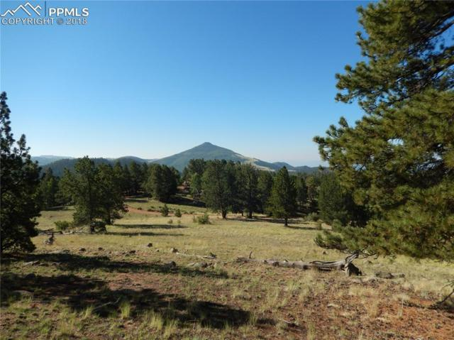 7070 County 1 Road, Cripple Creek, CO 80813 (#3078317) :: 8z Real Estate