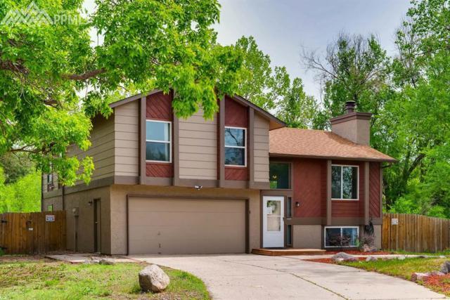 790 Vondelpark Drive, Colorado Springs, CO 80907 (#3092586) :: 8z Real Estate