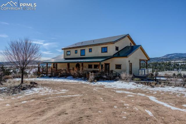 480 Rosebush Road, Canon City, CO 81212 (#3141672) :: Tommy Daly Home Team