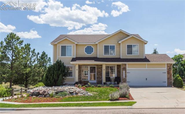 12516 Brookhill Drive, Colorado Springs, CO 80921 (#3143259) :: Jason Daniels & Associates at RE/MAX Millennium