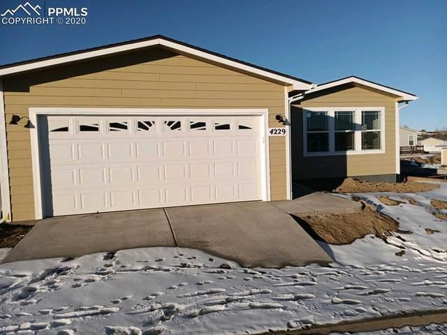 4229 Gray Fox Heights, Colorado Springs, CO 80922 (#3143832) :: Finch & Gable Real Estate Co.