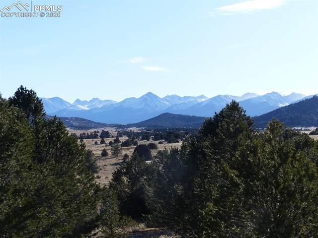 731 County Road 30, Cotopaxi, CO 81223 (#3170382) :: Action Team Realty