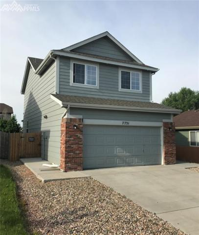 7731 Mountain Laurel Drive, Colorado Springs, CO 80922 (#3171269) :: The Treasure Davis Team