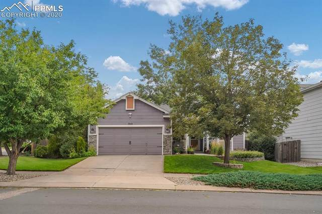 7010 Blazing Trail Drive, Colorado Springs, CO 80922 (#3188789) :: Tommy Daly Home Team