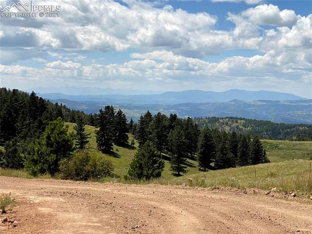 585 County Road 89, Cripple Creek, CO 80813 (#3196008) :: Tommy Daly Home Team