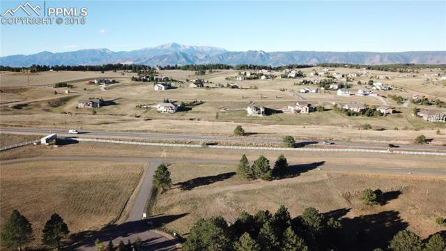3304 Blue Heron Spring Lane, Colorado Springs, CO 80908 (#3212613) :: Fisk Team, RE/MAX Properties, Inc.