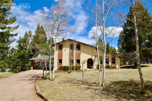 190 High View Circle, Woodland Park, CO 80863 (#3220780) :: 8z Real Estate