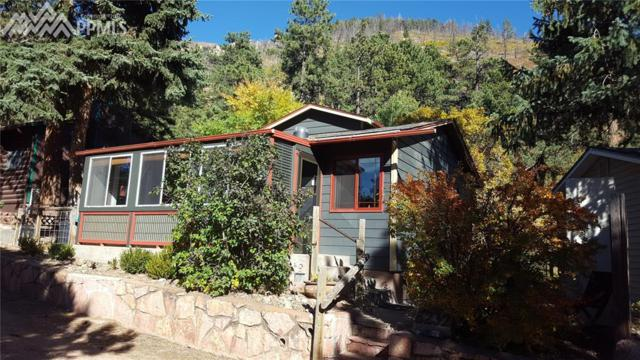 8232 W Highway 24 Highway, Cascade, CO 80809 (#3223041) :: The Treasure Davis Team