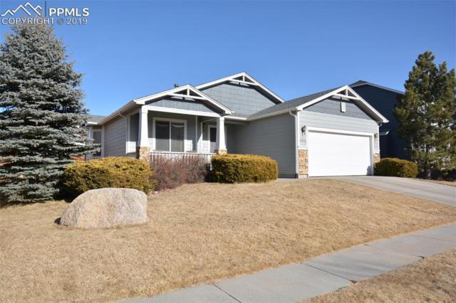 4216 Morning Glory Road, Colorado Springs, CO 80920 (#3230339) :: 8z Real Estate