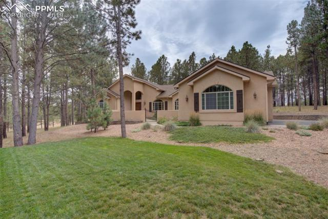 11305 Laforet Point, Colorado Springs, CO 80908 (#3232223) :: Tommy Daly Home Team