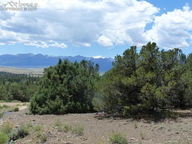 142 Dora Mountain Road, Westcliffe, CO 81252 (#3239932) :: The Daniels Team