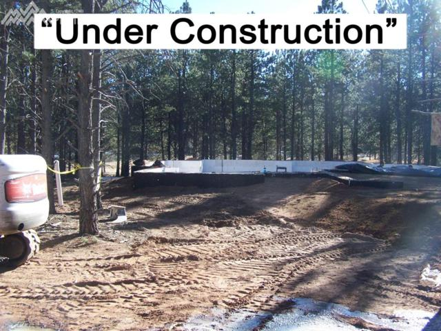 1326 Firestone Drive, Woodland Park, CO 80863 (#3240894) :: 8z Real Estate
