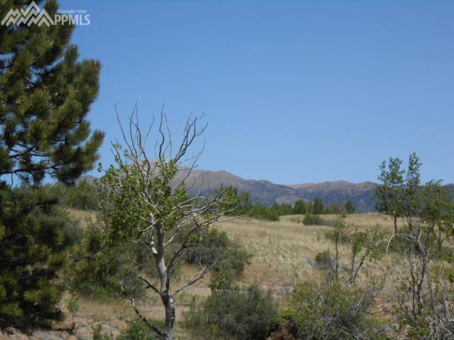 TBD County 863 Road, Victor, CO 80860 (#3259253) :: 8z Real Estate