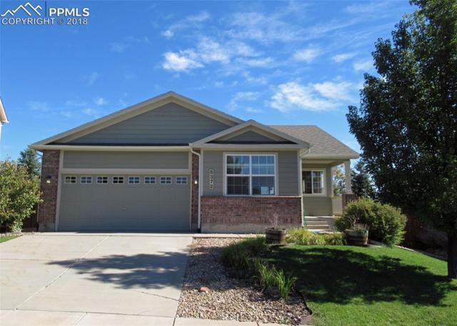 5372 Rose Ridge Lane, Colorado Springs, CO 80917 (#3266404) :: Jason Daniels & Associates at RE/MAX Millennium
