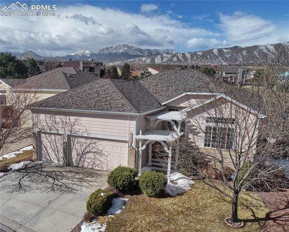 6230 Fencerail Heights, Colorado Springs, CO 80919 (#3334452) :: Jason Daniels & Associates at RE/MAX Millennium