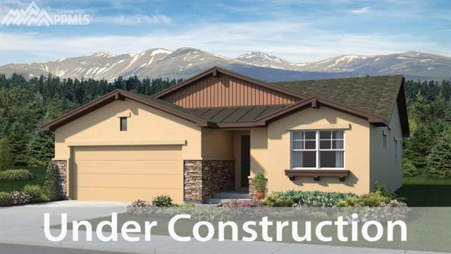 3061 Daydreamer Drive, Colorado Springs, CO 80908 (#3340193) :: 8z Real Estate