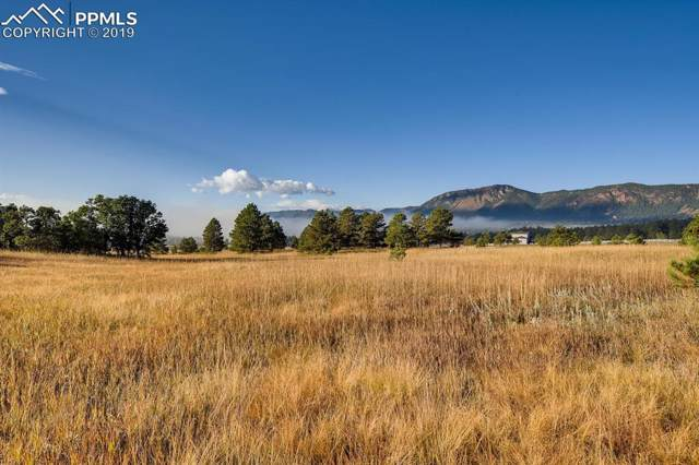 615 Pioneer Camp View, Monument, CO 80133 (#3378735) :: Jason Daniels & Associates at RE/MAX Millennium