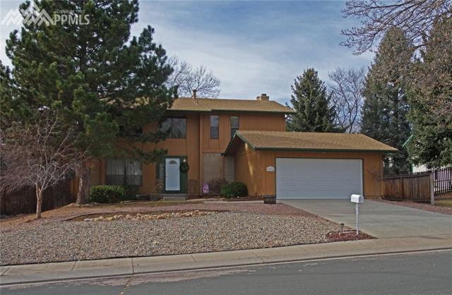 3076 Meander Circle, Colorado Springs, CO 80917 (#3423993) :: Action Team Realty