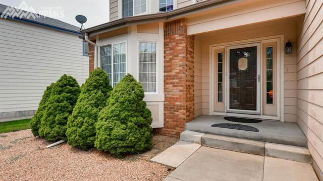 3520 Bareback Drive, Colorado Springs, CO 80922 (#3441749) :: The Peak Properties Group