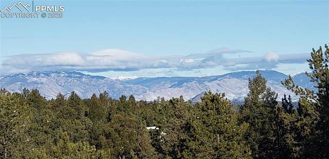 197 Parkview Drive, Woodland Park, CO 80863 (#3451465) :: Fisk Team, RE/MAX Properties, Inc.