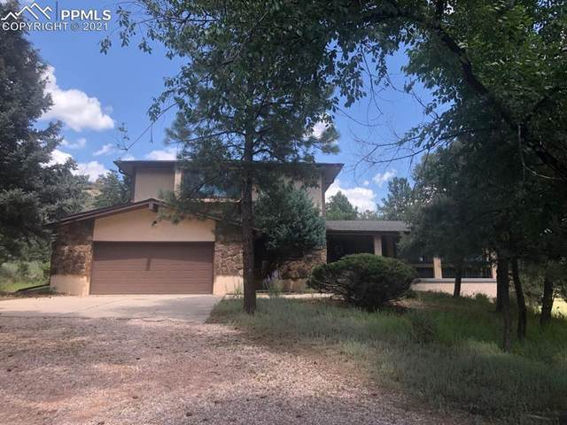6925 Winter Hawk Circle, Colorado Springs, CO 80919 (#3456171) :: Tommy Daly Home Team