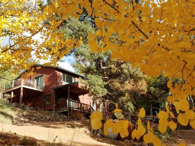 1184 Bennett Drive, Cripple Creek, CO 80813 (#3488392) :: The Daniels Team
