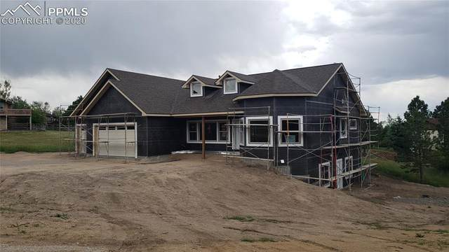 1135 Lake Woodmoor Drive, Monument, CO 80132 (#3535229) :: Tommy Daly Home Team