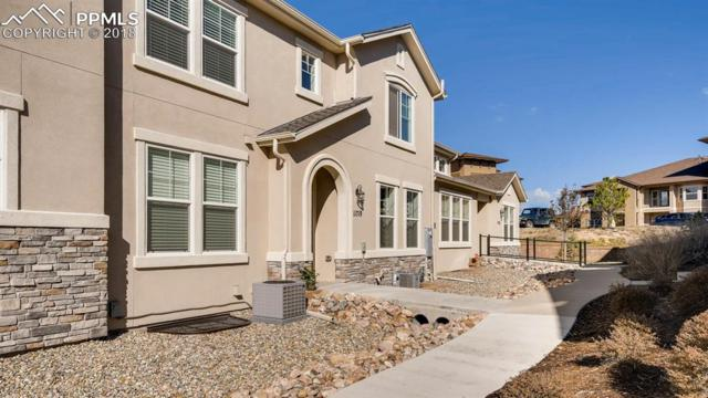 11719 Promontory Ridge View, Colorado Springs, CO 80921 (#3548644) :: The Kibler Group