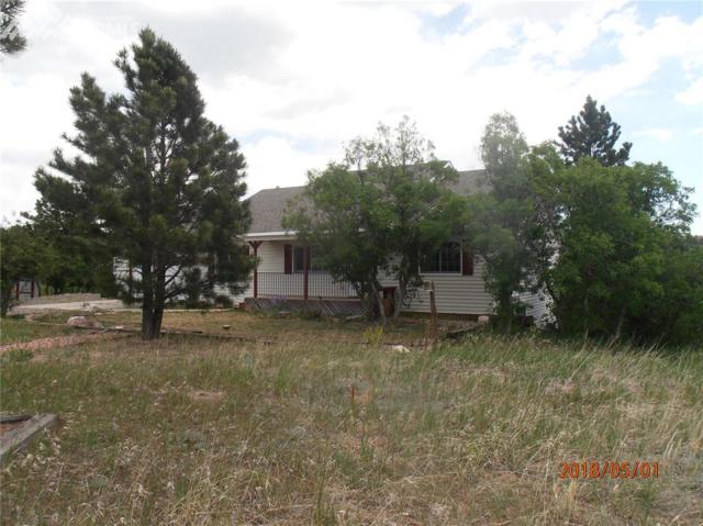19395 Draco Drive, Monument, CO 80132 (#3554871) :: 8z Real Estate