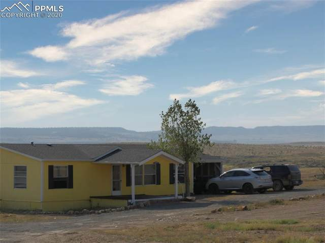 21210 High Stakes View, Fountain, CO 80817 (#3605466) :: Action Team Realty