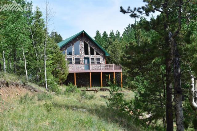 23000 County 67 Road, Victor, CO 80860 (#3627798) :: Harling Real Estate