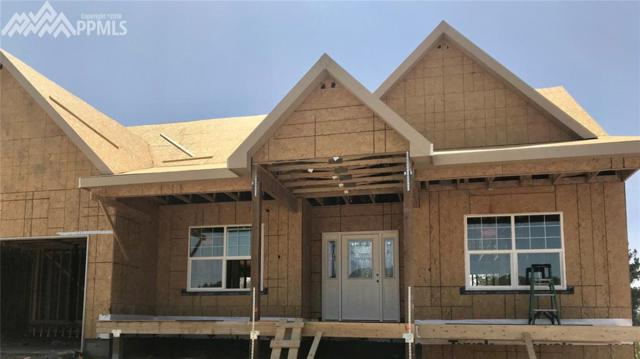 604 Pioneer Haven Point, Palmer Lake, CO 80133 (#3630622) :: 8z Real Estate