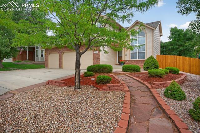 3703 Cape Romain Drive, Colorado Springs, CO 80920 (#3640365) :: Fisk Team, RE/MAX Properties, Inc.